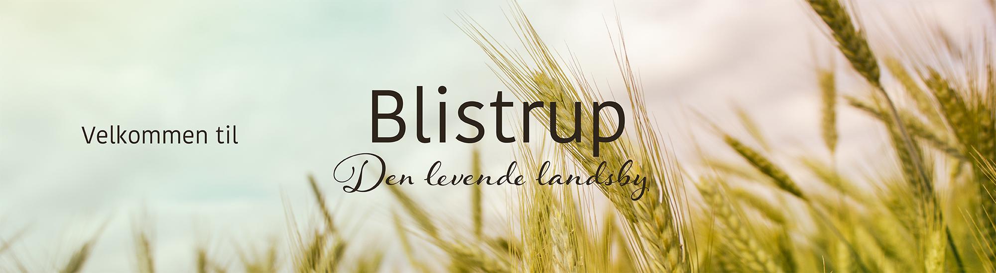 Blistrup logo 3