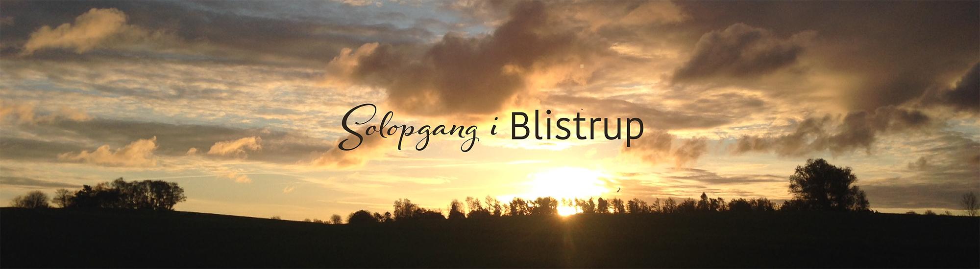 Blistrup logo 4
