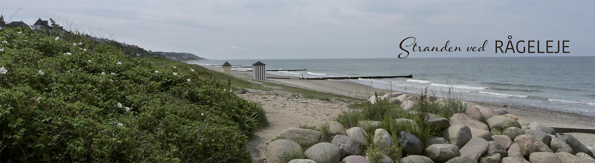 stranden ved rågeleje